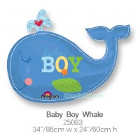 Baby Boy Whale